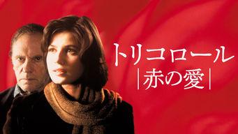 トリコロール/赤の愛