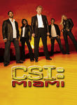 CSI: Miami: Season 7 Poster