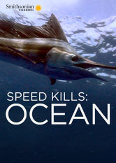 Speed Kills: Ocean