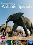 David Attenborough: Wildlife Specials Poster