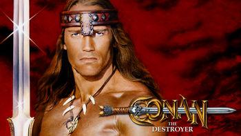 Netflix box art for Conan the Destroyer