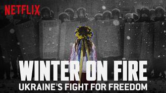 Netflix Box Art for Winter on Fire