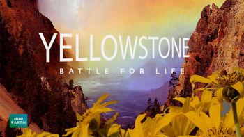 Netflix box art for Yellowstone: Battle for Life - Season 1