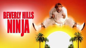 Netflix box art for Beverly Hills Ninja