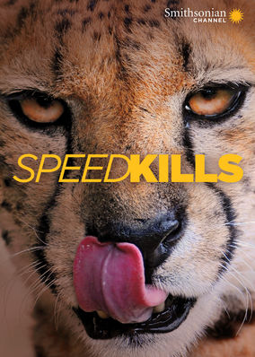 Speed Kills - Season 1