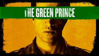 Netflix box art for The Green Prince