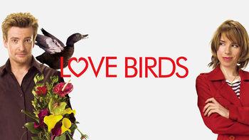 Netflix box art for Love Birds