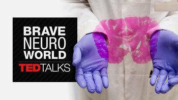 Netflix box art for TEDTalks: Brave Neuro World - Season 1