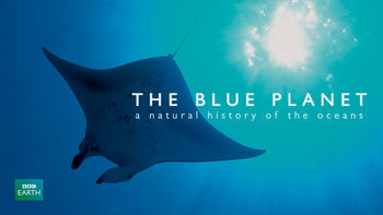 Netflix box art for Blue Planet: Natural History of the Oceans - Season 1