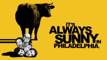 Netflix box art for It's Always Sunny in Philadelphia - Season 1