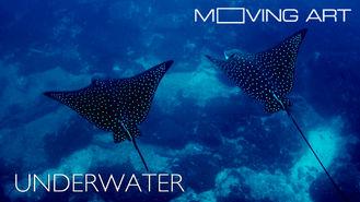 Netflix box art for Moving Art: Underwater