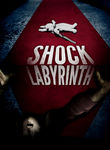 The Shock Labyrinth 3D