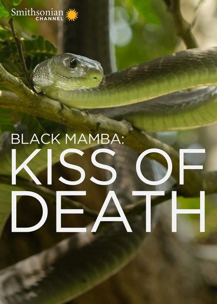 Black Mamba: Kiss of Death Netflix PR (Puerto Rico)