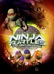 Ninja Turtles: The Next Mutation Poster
