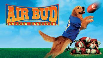 Netflix box art for Air Bud: Golden Receiver