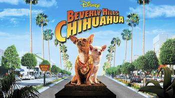 Netflix box art for Beverly Hills Chihuahua