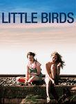 Little Birds Poster