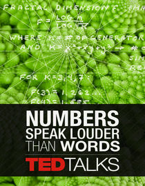 TEDTalks: Numbers Speak Louder than Words: Marcus du Sautoy: Symmetry, Reality's Riddle