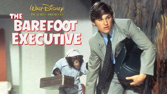 """Résultat de recherche d'images pour """"whatsnewonnetflix.com The Barefoot Executive"""""""