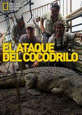 Elataque del cocodrilo