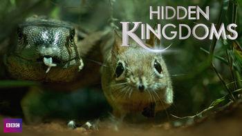 Netflix box art for Hidden Kingdoms - Season 1
