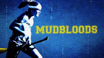 Netflix Box Art for Mudbloods