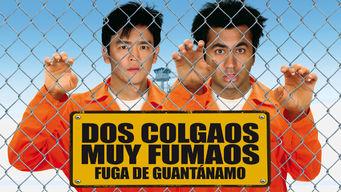 Dos colgaos muy fumaos fuga de Guantánamo