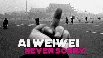 Netflix box art for Ai Weiwei: Never Sorry