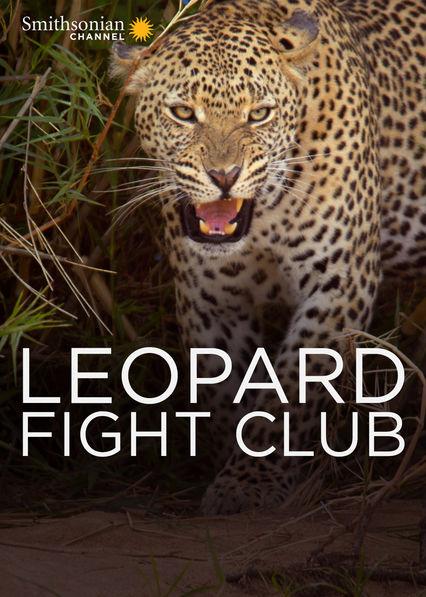 Leopard Fight Club Netflix PR (Puerto Rico)