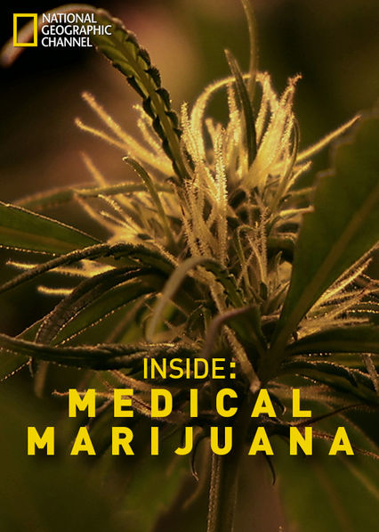 Inside: Medical Marijuana Netflix BR (Brazil)