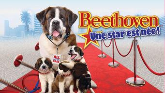 Beethoven: une star est née!