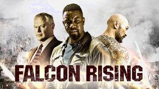Netflix Box Art for Falcon Rising