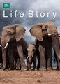 Life Story | filmes-netflix.blogspot.com