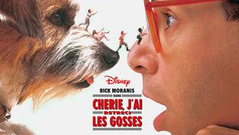 11164022 Toutes les sorties film de Février sur Netflix France