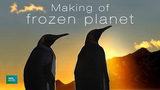 Netflix Box Art for Making of Frozen Planet - Season 1, The