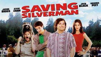 Netflix box art for Saving Silverman