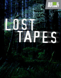 Lost Tapes: Season 3: Q: The Serpent God
