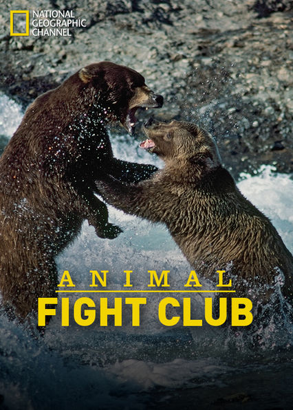 Animal Fight Club Netflix BR (Brazil)