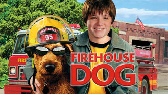 Netflix box art for Firehouse Dog