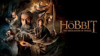 Netflix box art for The Hobbit: The Desolation of Smaug