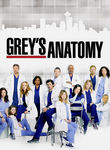 Grey's Anatomy: Season 6 Poster
