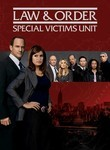 Law & Order: Special Victims Unit: The Twelfth Year Poster