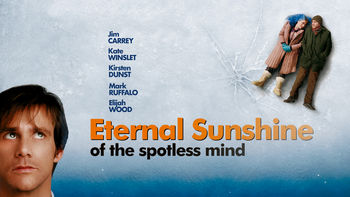 Netflix box art for Eternal Sunshine of the Spotless Mind