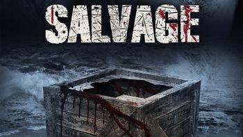 Netflix box art for Salvage