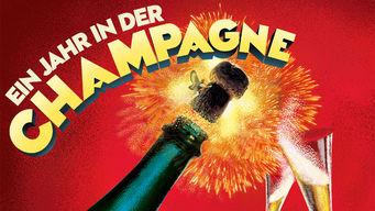 Ein jahr in der Champagne
