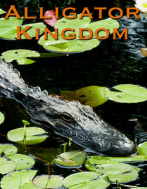 Alligator Kingdom