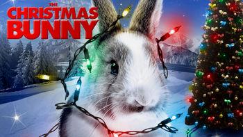 Netflix box art for The Christmas Bunny