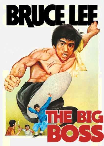 The Big Boss Netflix BR (Brazil)