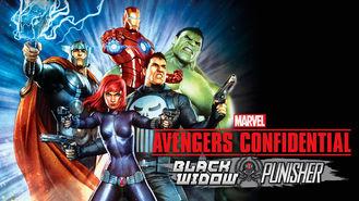 Netflix box art for Avengers: Black Widow & Punisher