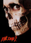 Evil Dead 2: Dead by Dawn Poster